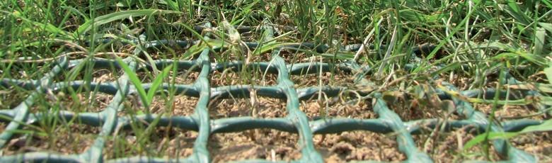 Zatravňovací rohož zelená GrassRoll Basic 2x5m včetně U-Pinů