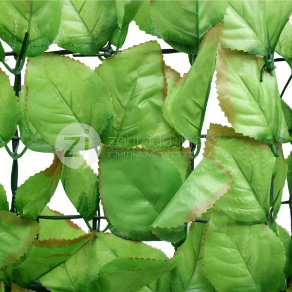 Umělý živý plot FAGUS, výška role - 1,5 m (Listy vejčitého tvaru)